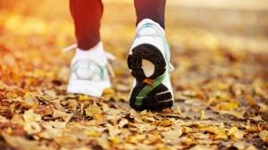laufen-herbstzeit-ist-joggingzeit-